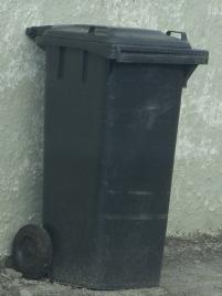 bin cropped
